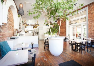 Trees Restaurant Victoria - rewired by Titan Electric